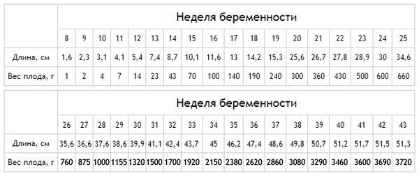 Таблица веса плода по неделям